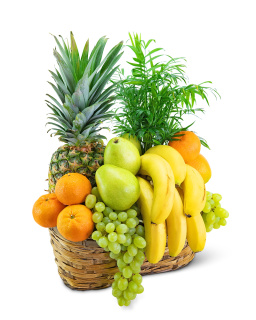Green Goodness Fruit & Plant Basket
