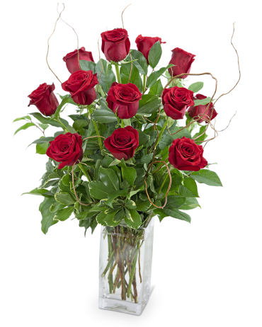 Dozen Red Roses with Willow