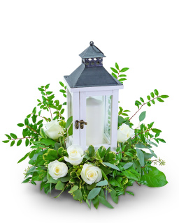 Signature White Rose Lantern