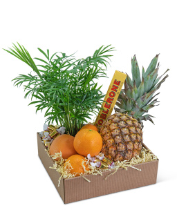 Tropical Oasis Basket